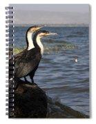 Great Rift Cormorants Spiral Notebook