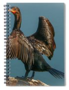 Cormorant Wings Spiral Notebook