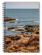 Cormorants And Seagulls Resting Spiral Notebook