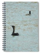 Cormorants On The Lake Spiral Notebook