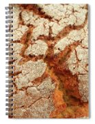 Corn Bread Crust Spiral Notebook