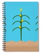 Corn Rows Spiral Notebook