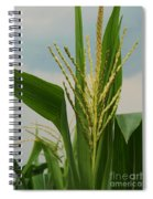 Corn Stalk Spiral Notebook