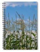 Corn Tassels In The Sky Spiral Notebook
