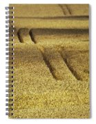 Cornfield Spiral Notebook