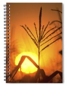 Cornfield Sunset Spiral Notebook