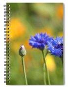 Cornflowers -1- Spiral Notebook