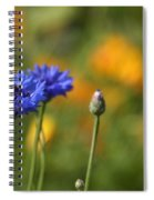 Cornflowers -2- Spiral Notebook