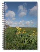 Cornish Daffodil Hedge Spiral Notebook