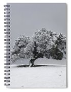 Corral Hollow Tree In Snow Spiral Notebook