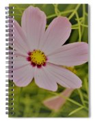 Cosmic Aura Spiral Notebook