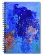 Cosmic Display Spiral Notebook