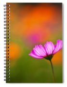 Cosmo Pastels Spiral Notebook