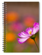 Cosmo Solo Spiral Notebook