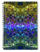 Cosmos Crown Jewels 2 Spiral Notebook
