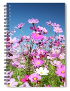 Cosmos Flowers Spiral Notebook