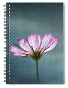 Cosmos - Summer Love Spiral Notebook