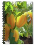 Costa Rica Star Fruit Known As Carambola Spiral Notebook