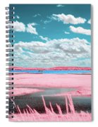 Cotton Candy Marsh Spiral Notebook