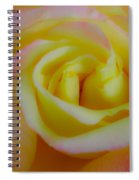 Cotton Candy Roses Spiral Notebook