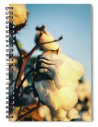 Cotton Field 13 Spiral Notebook