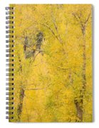 Cottonwood Autumn Colors Spiral Notebook