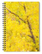 Cottonwood Colors  Spiral Notebook