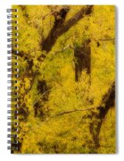 Cottonwood Fall Foliage Colors Abstract Spiral Notebook