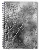 Cottonwood Skies Spiral Notebook