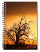 Cottonwood Sunrise - Vertical Print Spiral Notebook