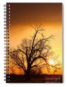 Cottonwood Sunrise - Vertical Print Spiral Notebook
