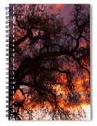 Cottonwood Sunset Silhouette Spiral Notebook