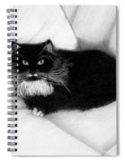 Couch Potato Spiral Notebook