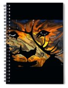 Cougar Elk   -015 Spiral Notebook