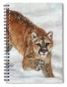 Cougar In The Snow Spiral Notebook