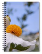 Coulter's Poppy 4 Spiral Notebook