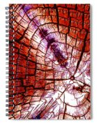Counting The Years Spiral Notebook
