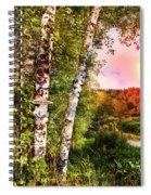 Country Birch Spiral Notebook