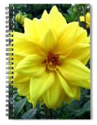 Country Dahlias Spiral Notebook