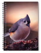 Country Mouse... Spiral Notebook