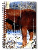Country Pals Spiral Notebook