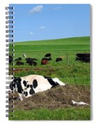 Countryside Cows Spiral Notebook