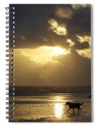 County Meath, Ireland Girl Walking Dog Spiral Notebook