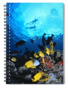 Couple Snorkels At Surfac Spiral Notebook