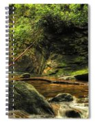 Courthouse Waterfall Spiral Notebook
