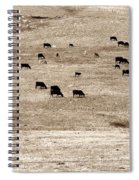 Cow Droppings Spiral Notebook