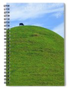 Cow Eating On Round Top Hill Spiral Notebook