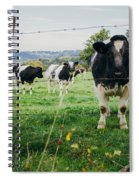 Cow Herd Spiral Notebook