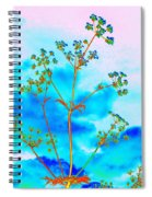 Cow Parsley Blossom 2 Spiral Notebook