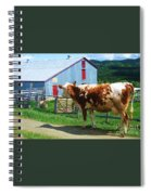 Cow Sheep And Bicycle Spiral Notebook
